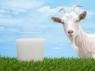 Натуральное Мыло из Свежего Козьего молока с Маслом Аргайн 100г, Австралия