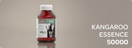 KANGAROO ESSENCE ВЫТЯЖКА ИЗ ЖЕЛЕЗЫ КЕНГУРУ Для мужчин Потенция+Профилактика от простатита, 500мгх90капс., Австралия